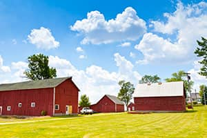 Red Barns on Farm